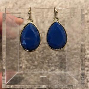 NWOT Blue Statement Earrings